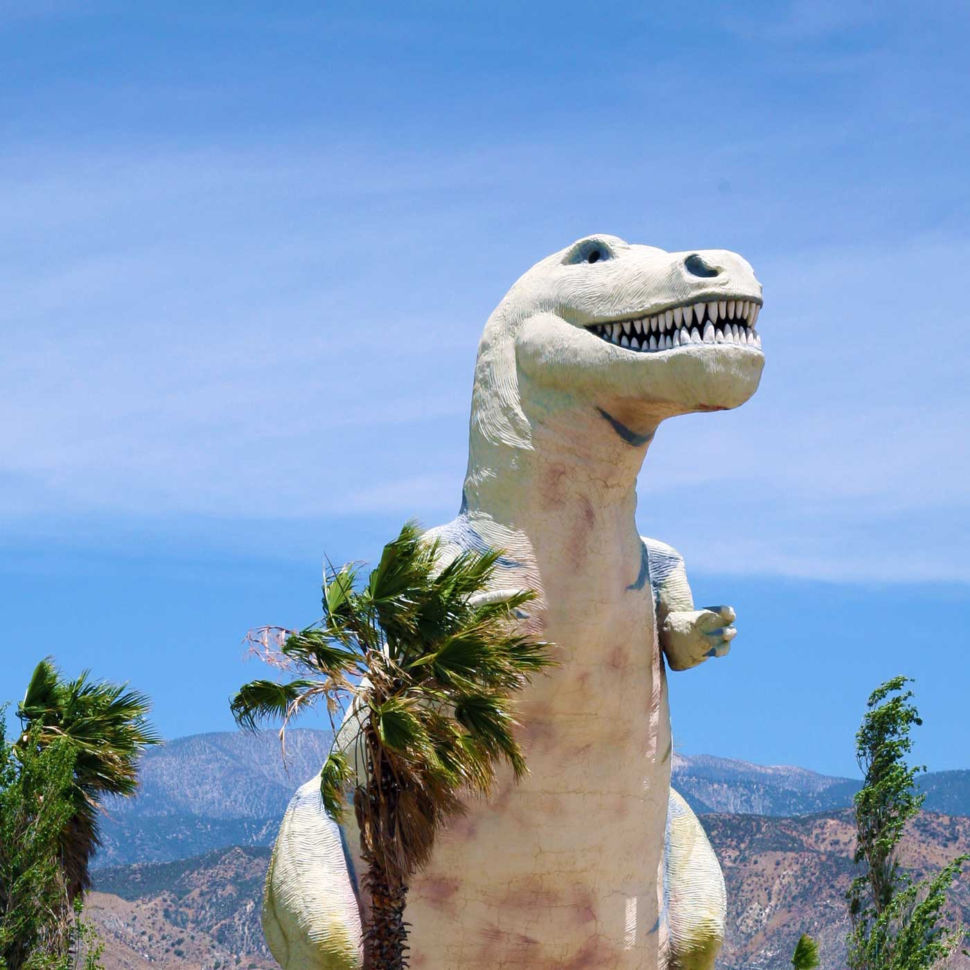 Must-See Roadside Attractions