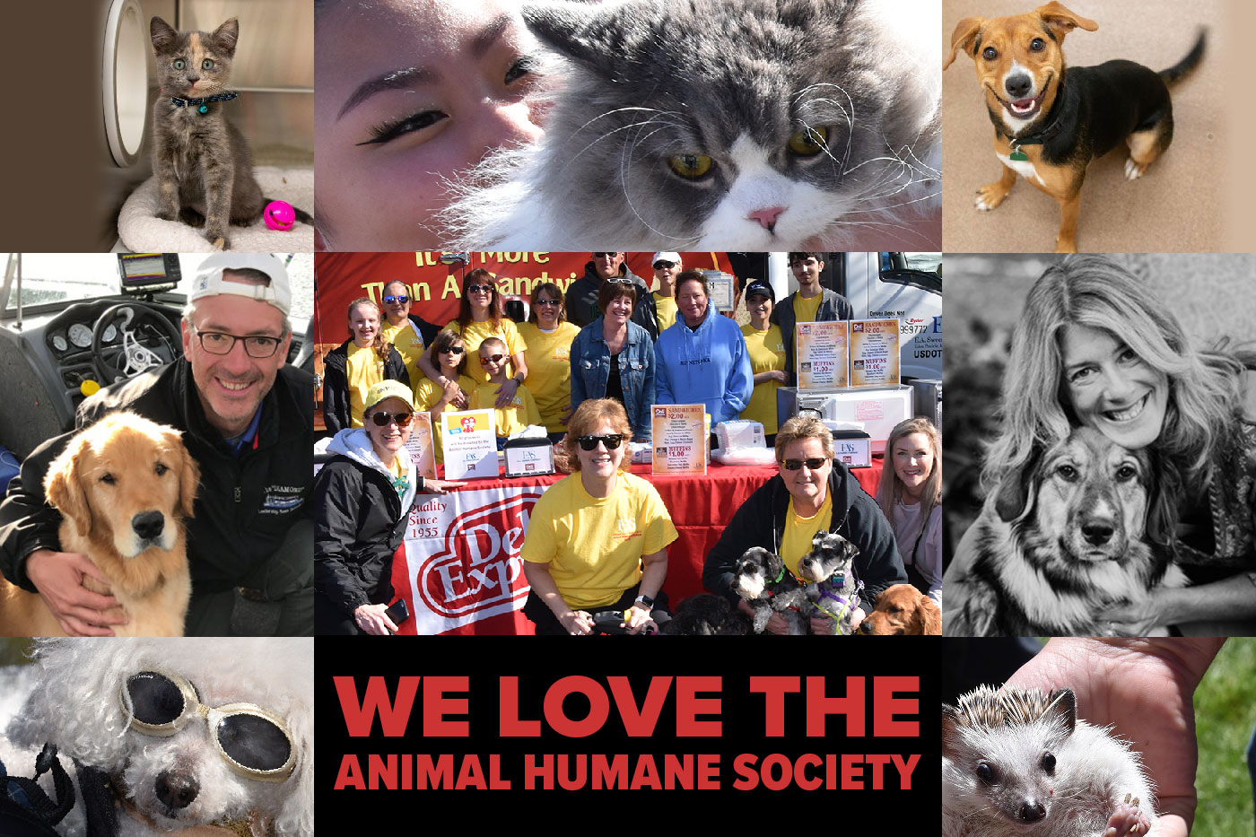 We love the Animal Humane Society image