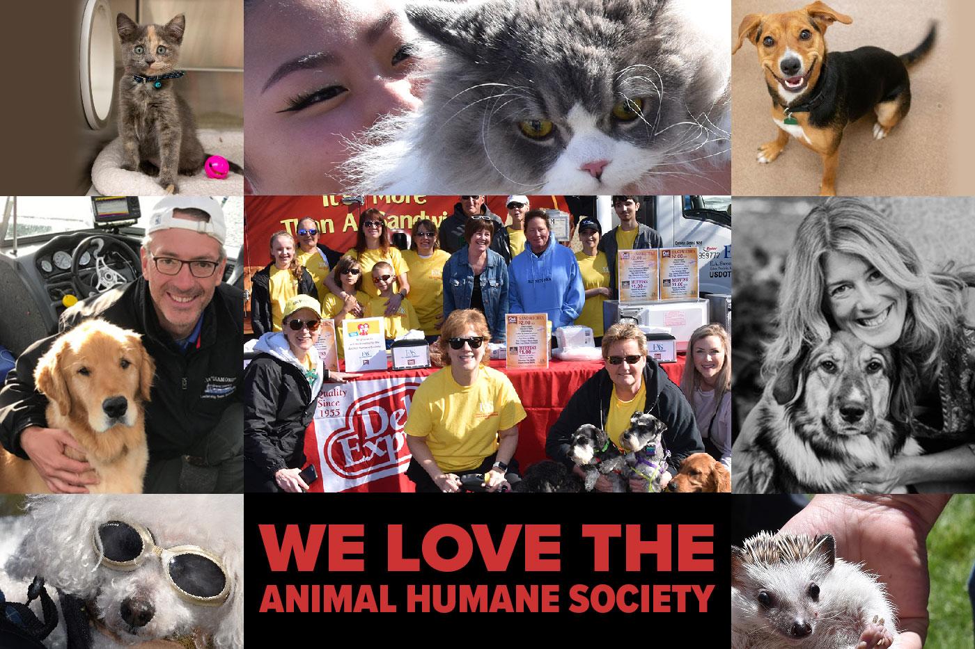 We love the Animal Humane Society image